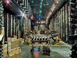 Chicago IL 60607 Loop Liquor Store Metal Wine Racking (004)
